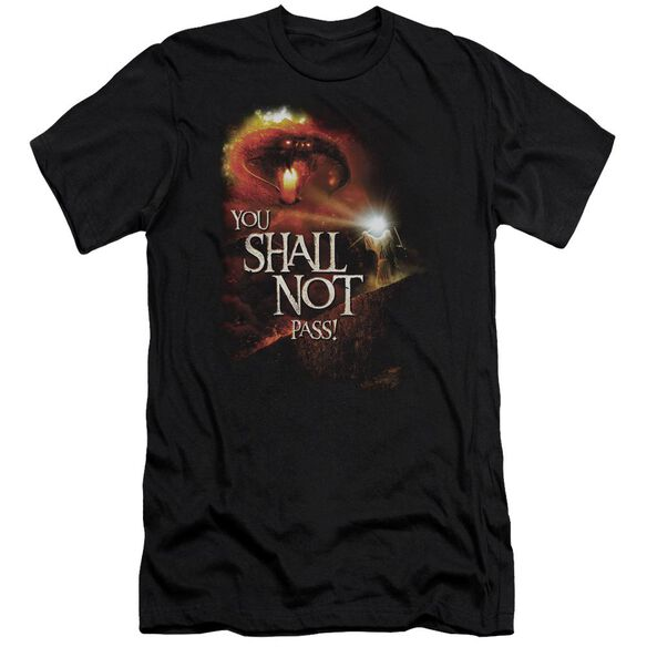 Lor You Shall Not Pass Short Sleeve Adult T-Shirt