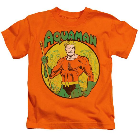 Dc Aquaman Short Sleeve Juvenile Orange T-Shirt