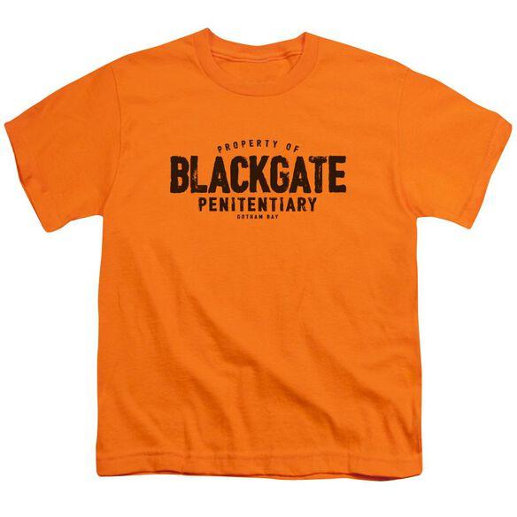 Batman Blackgate Short Sleeve Youth T-Shirt