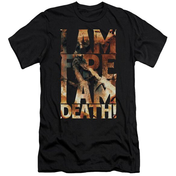 Hobbit I Am Fire Short Sleeve Adult T-Shirt