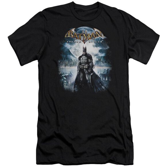 Batman Aa Game Cover Short Sleeve Adult T-Shirt
