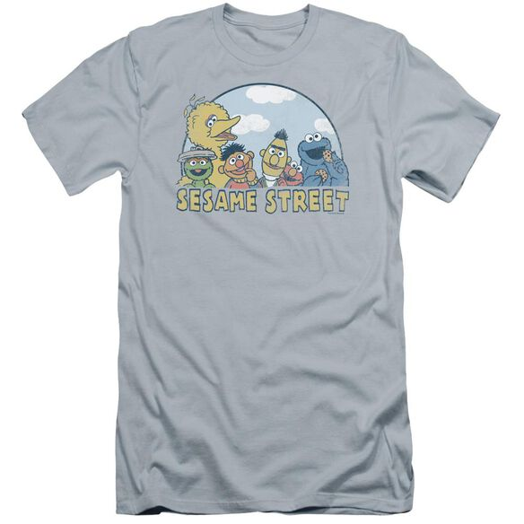 Sesame Street Sesame Group Premuim Canvas Adult Slim Fit Light