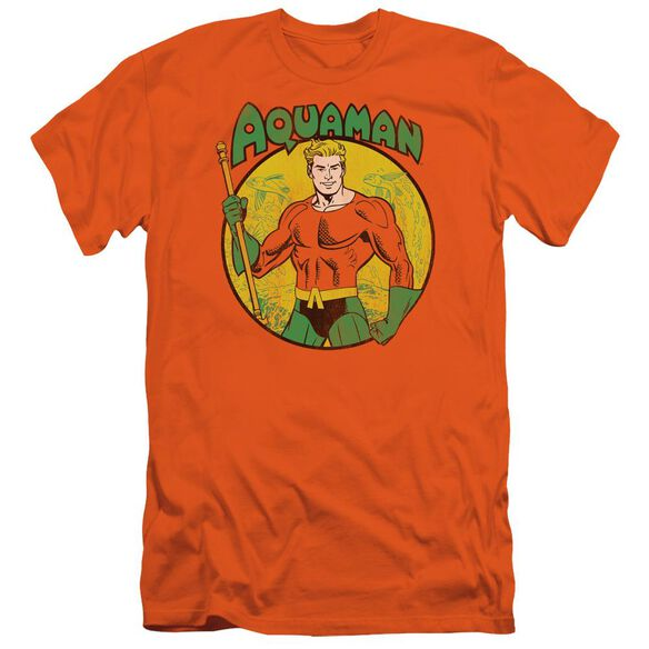 Dc Aquaman Short Sleeve Adult T-Shirt