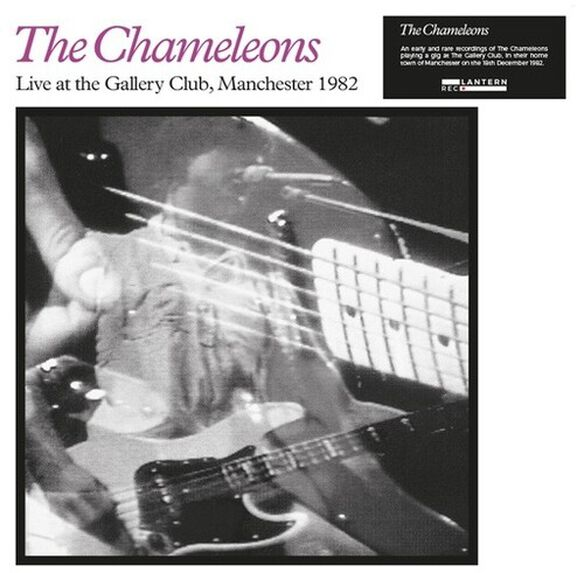 The Chameleons - Live at the Gallery Club