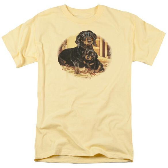 Wildlife Picture Perfect Dachshunds Short Sleeve Adult Banana T-Shirt
