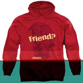 LABYRINTH LUDO FRIEND-ADULT