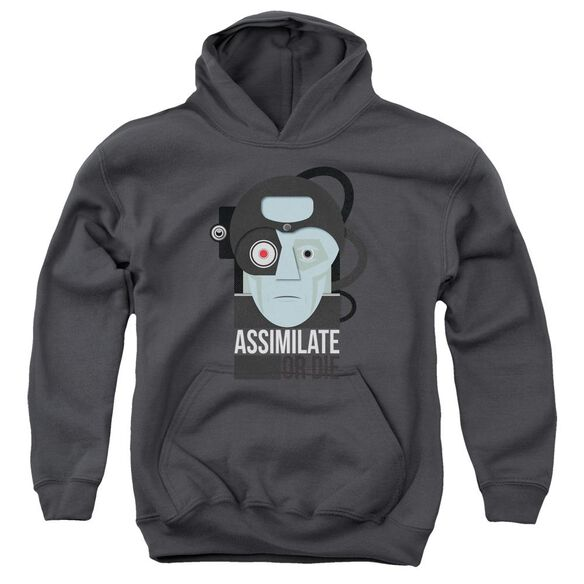 Star Trek Assismilate Or Die Youth Pull Over Hoodie