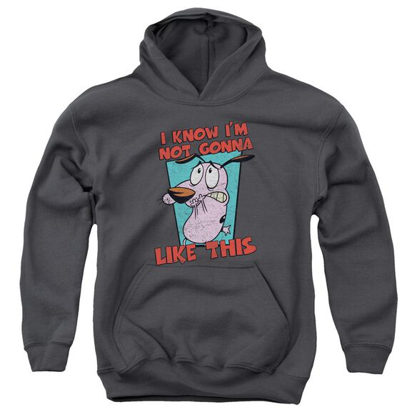 Courage The Cowardly Dog Not Gonna Like Youth Pull Over Hoodie