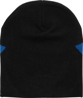 Nightwing Logo Slouch Beanie