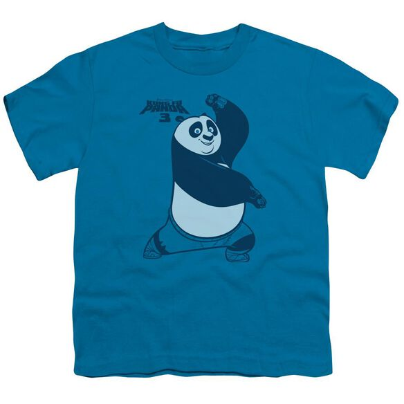 Kung Fu Panda Fighting Stance Short Sleeve Youth T-Shirt