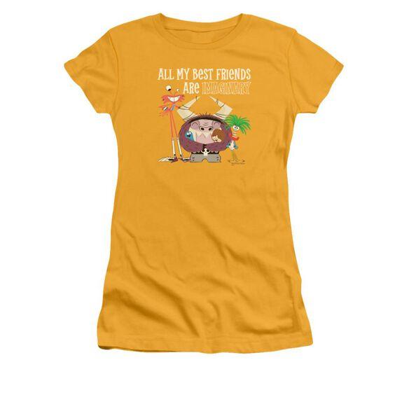 Foster's Imaginary Friends Short Sleeve Junior Sheer T-Shirt