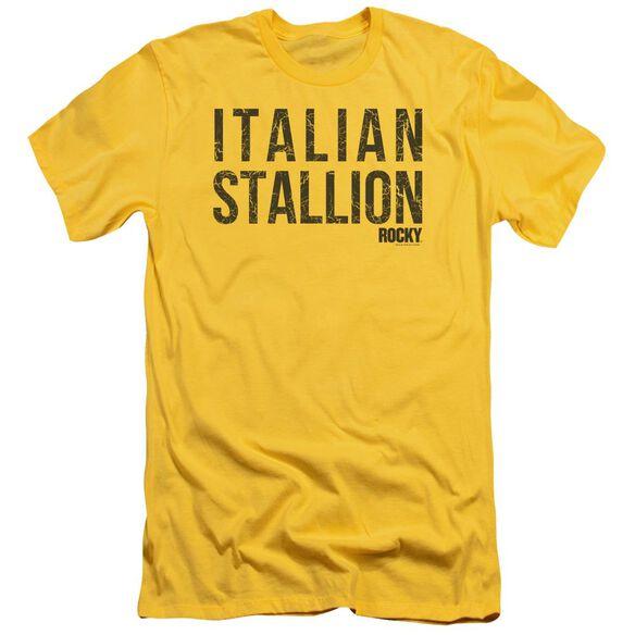 Rocky Italian Stallion Premuim Canvas Adult Slim Fit
