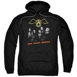 Aerosmith Get Your Wings Adult Pull Over Hoodie Black