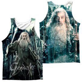 Hobbit Wizard (Front Back) Adult 100% Poly Tank Top