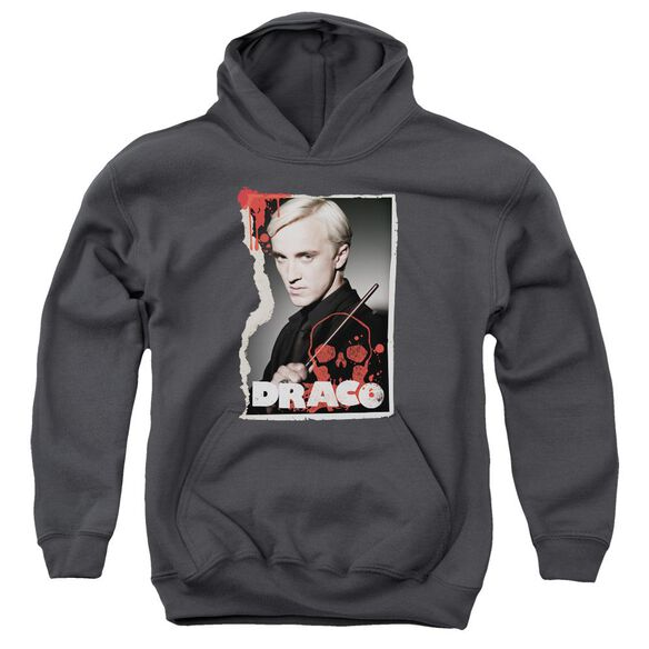 Harry Potter Draco Frame Youth Pull Over Hoodie