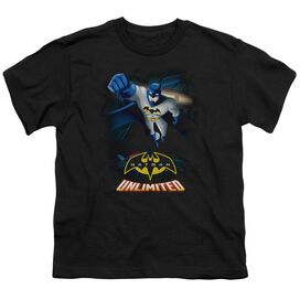 Batman Unlimited Descent Short Sleeve Youth T-Shirt