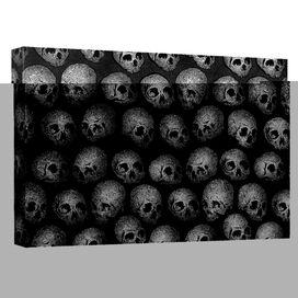 Skulls Quickpro Artwrap Back Board