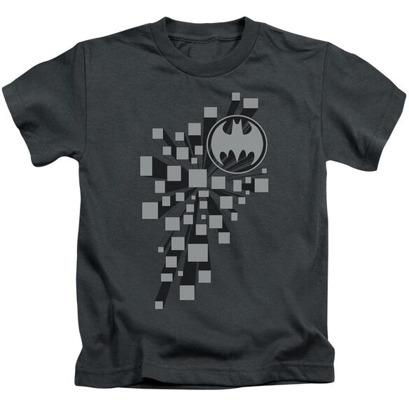 Batman Gotham 3 D Short Sleeve Juvenile Charcoal Md T-Shirt