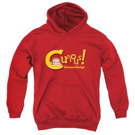 Curious George Curious Youth Pull Over Hoodie