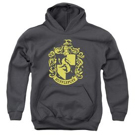 Harry Potter Hufflepuff Crest Youth Pull Over Hoodie