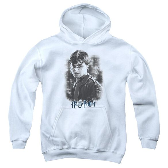 Harry Potter Harry In The Woods Youth Pull Over Hoodie