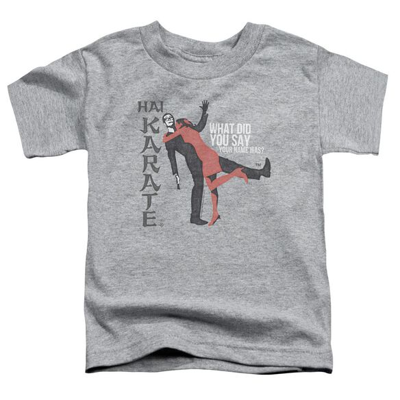 Hai Karate Name Short Sleeve Toddler Tee Athletic Heather Md T-Shirt