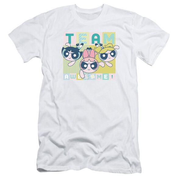 Powerpuff Girls Awesome Block Short Sleeve Adult T-Shirt