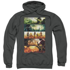 Injustice Gods Among Us Panels Adult Pull Over Hoodie