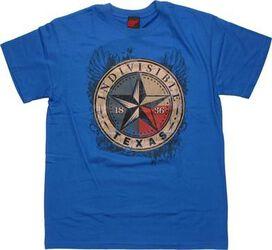 Flag Texas Indivisible T-Shirt