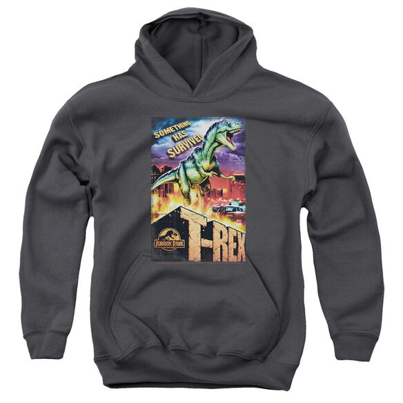 Jurassic Park Rex In The City Youth Pull Over Hoodie