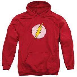 Dco Rough Flash Logo Adult Pull Over Hoodie