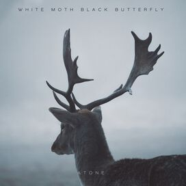 White Moth Black Butterfly - Atone