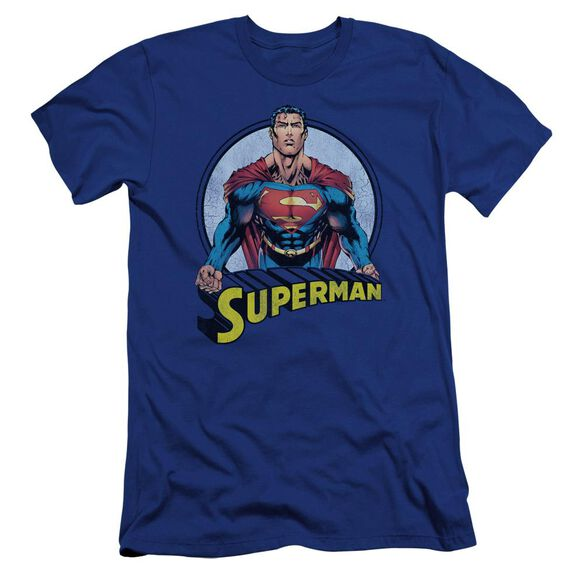 Superman Flying High Again Premuim Canvas Adult Slim Fit Royal
