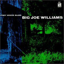 Big Joe Williams - Piney Woods Blues