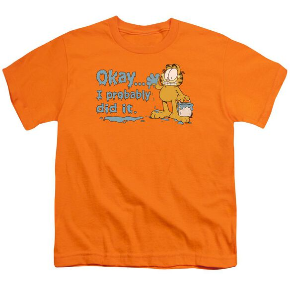 Garfield I Probably Did It Short Sleeve Youth T-Shirt