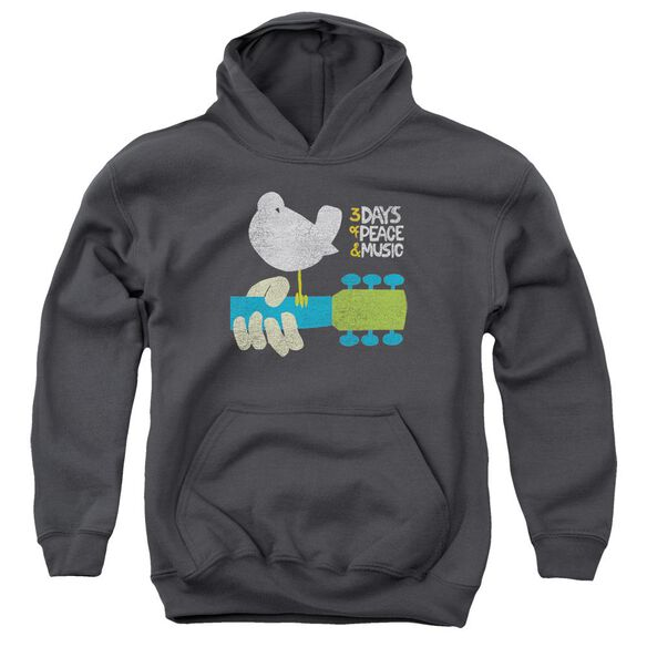 Woodstock Perched Youth Pull Over Hoodie