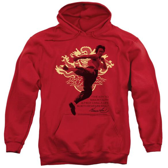 Bruce Lee Immortal Dragon Adult Pull Over Hoodie
