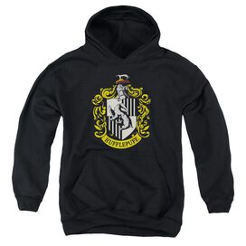 Harry Potter Hufflepuff Crest-youth