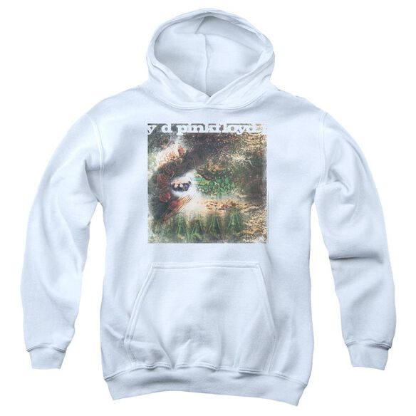 Pink Floyd Saucerful Of Secrets Youth Pull Over Hoodie