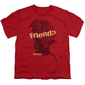 Labyrinth Ludo Friend Short Sleeve Youth T-Shirt