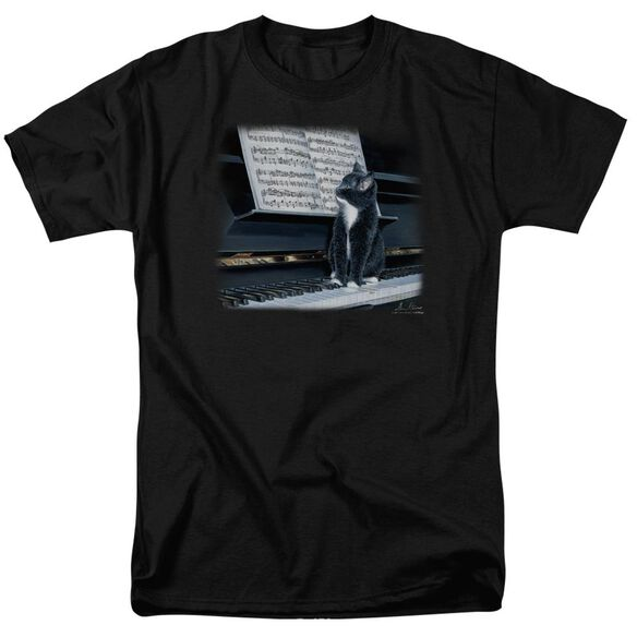Wildlife Kitten On The Keys Short Sleeve Adult T-Shirt