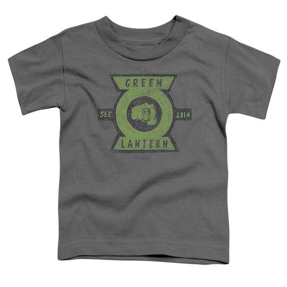 Green Lantern Section Short Sleeve Toddler Tee Charcoal T-Shirt