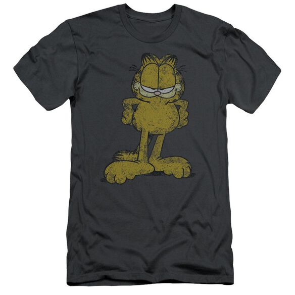Garfield Big Ol Cat Short Sleeve Adult T-Shirt