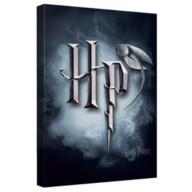Harry Potter Hp Logo Canvas Wall Art With Back Board