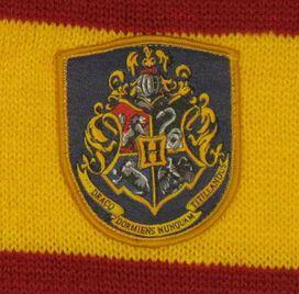 Harry Potter Hogwarts Combo