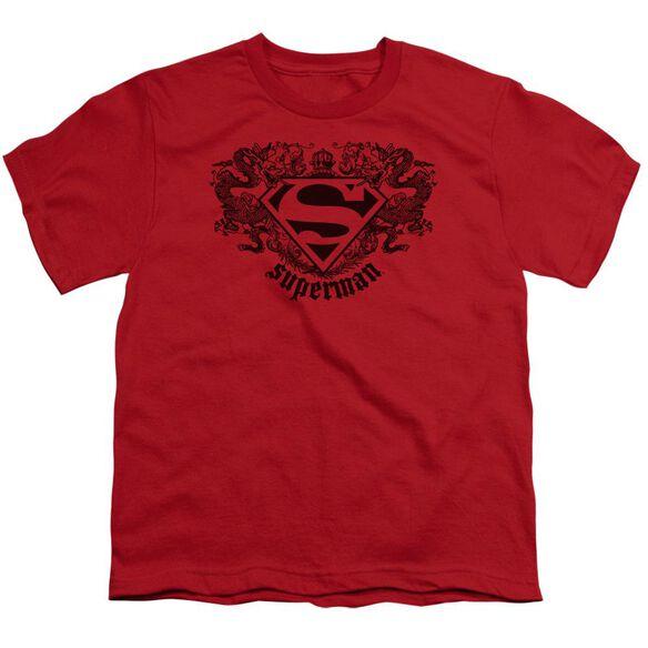 Superman Superman Dragon Short Sleeve Youth T-Shirt