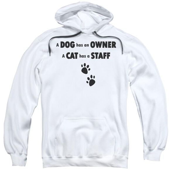 Cat Has A Staff Adult Pull Over Hoodie Black