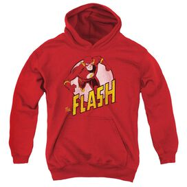Dc Flash The Flash Youth Pull Over Hoodie