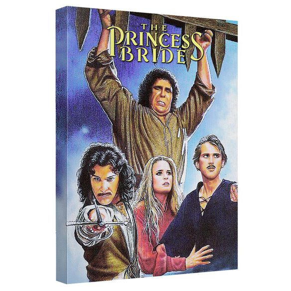 Princess Bride Poster Canvas Wall Art With Back Board