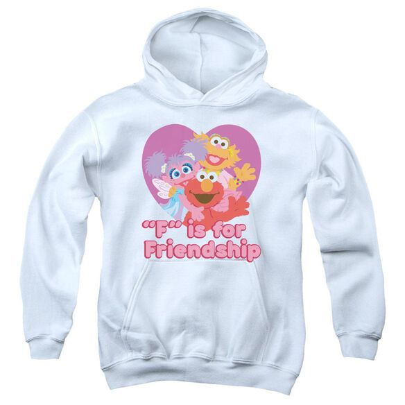 Sesame Street Friendship Youth Pull Over Hoodie